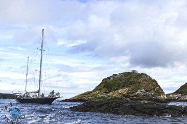 Entrada de Puerto Hopner